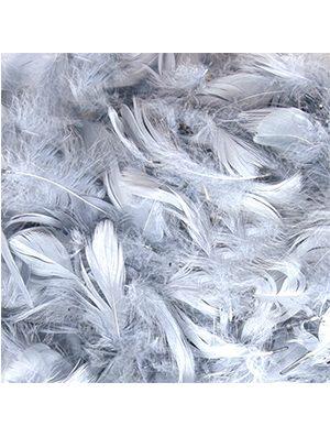 Plumas para Globos color plata